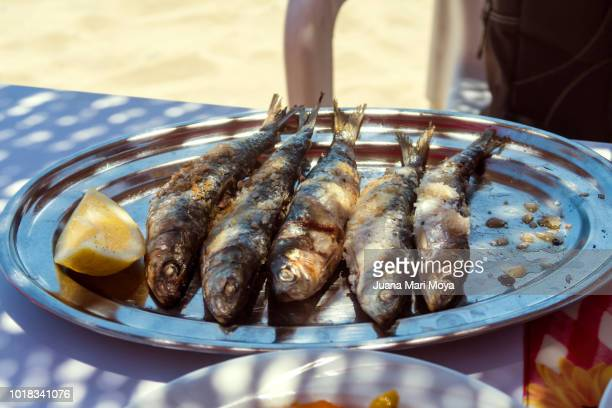 typical dish of the costa del sol, in estepona, málaga, andalucia, spain.  grilled sardines  it's called espeto - andalucia fotografías e imágenes de stock