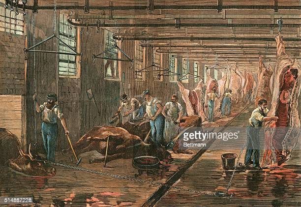 Typical dressing room in an American meatpacking house This industry first developed conveyingbelt methods