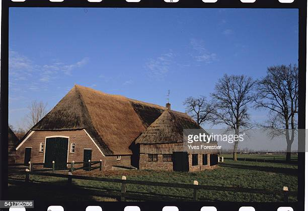 Typical farm of Drenthe with thatched roofs, of the type Vincent Van Gogh loved to paint.