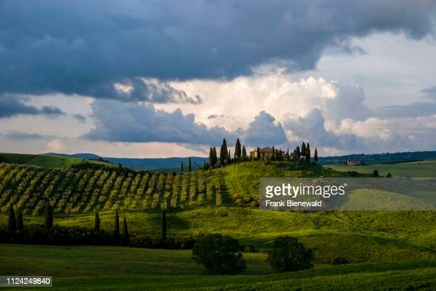 Typical hilly Tuscan countryside in Val dOrcia with the farm Podere Belvedere on a hill, fields, cypresses and olive trees, dark thunderstorm clouds...