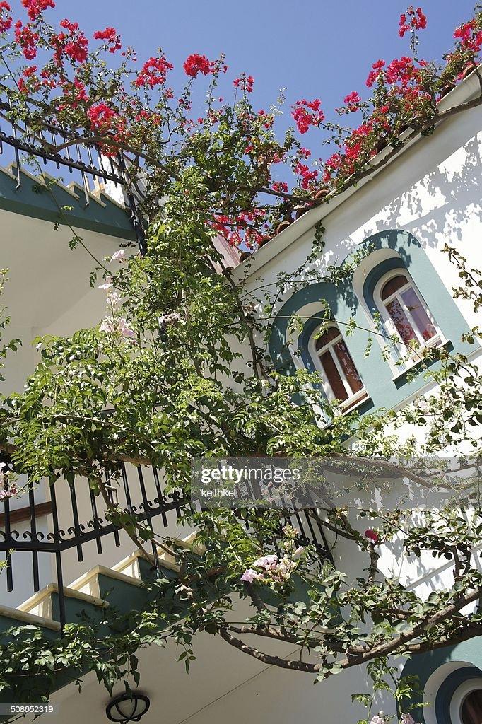 typical holiday villa crete : Stock Photo