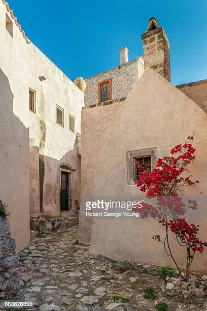 typical homes, bougainvillea flowers, monemvasia - lacônia grécia - fotografias e filmes do acervo