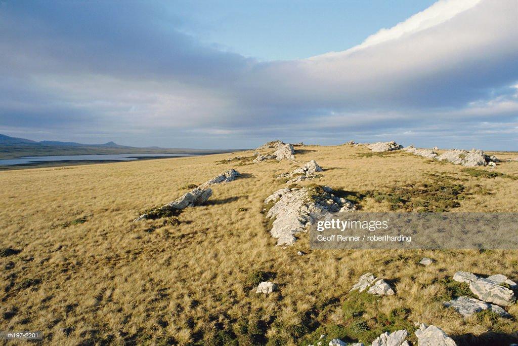 Typical landscape, East Falklands, Falkland Islands, South Atlantic : Foto de stock