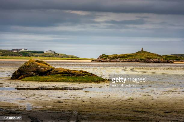 typical landscape in ireland - low tide stock pictures, royalty-free photos & images