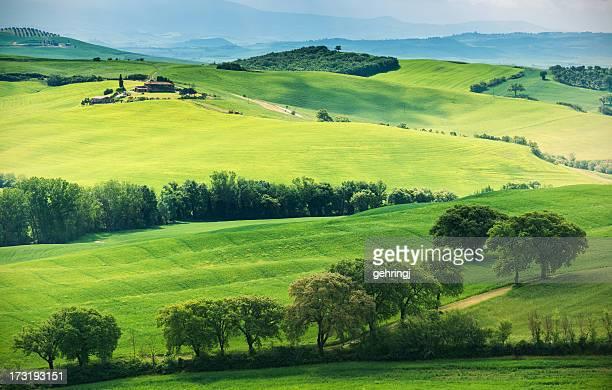 paesaggio tipico della toscana - paesaggio collinare foto e immagini stock