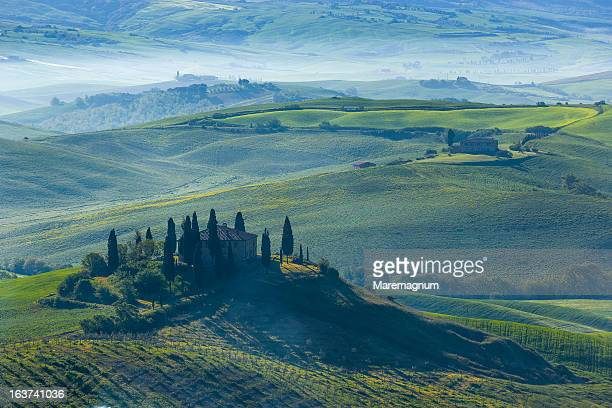 typical landscape - san quirico d'orcia stock pictures, royalty-free photos & images