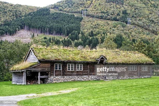 Typical long building constructed of logs with a turfed roof.This one is called Løsetstova and is of unknown date.