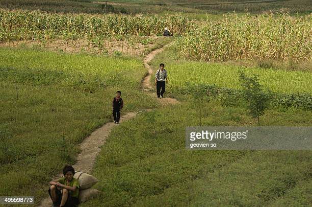 CONTENT] A typical north korean farm