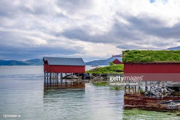 typical norwegian rorbu at sommarøy in troms northern norway - finn bjurvoll stock pictures, royalty-free photos & images