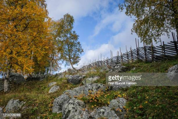 typical norwegian skigard fence nade from wood - finn bjurvoll stock pictures, royalty-free photos & images