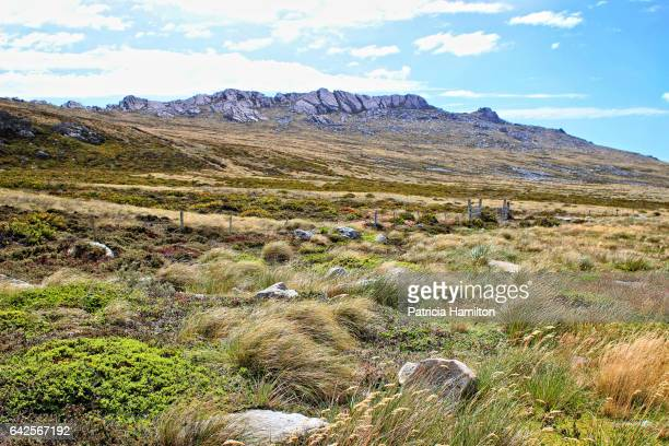 Typical scenery, Falkland Islands