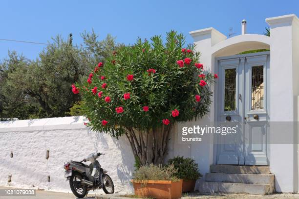 typical spetses island door - spetses stock pictures, royalty-free photos & images