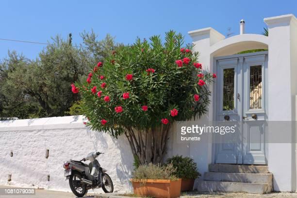 Typical Spetses island door