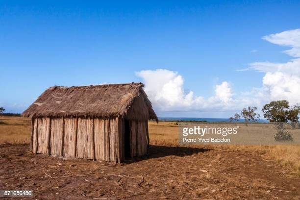 typical straw house - shack stock pictures, royalty-free photos & images