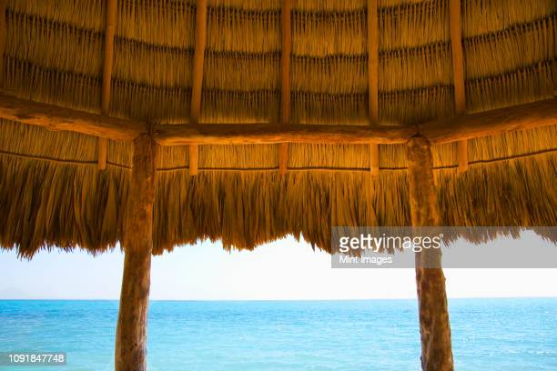 a typical thatched roof cabana on an ocean beach in the caribbean - cabine de plage photos et images de collection