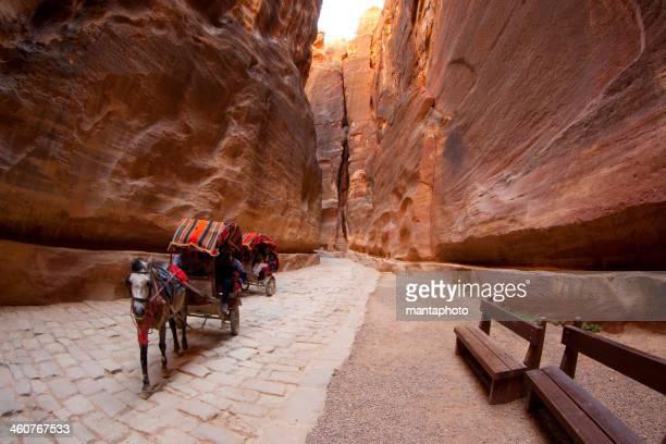 Typique de transport touristique de Petra