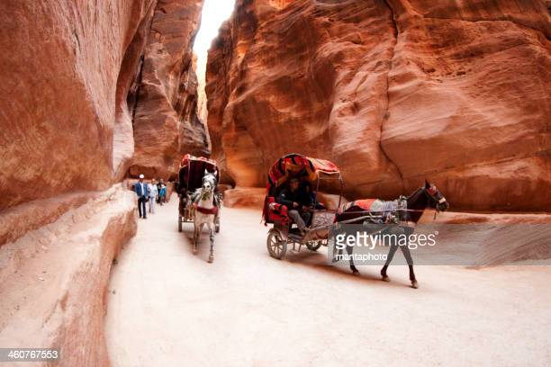 Typical tourist transport in Petra