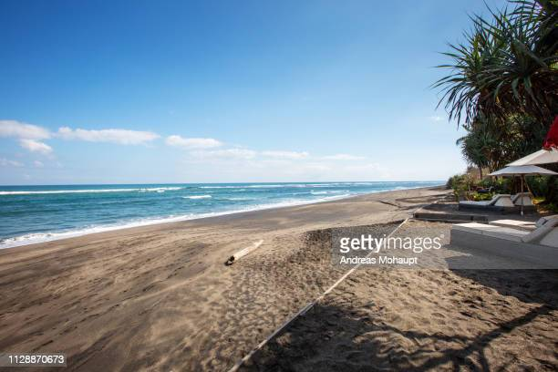 typical umbrellas on the beach in canggu, bali island, indonesia - sonnig stock pictures, royalty-free photos & images