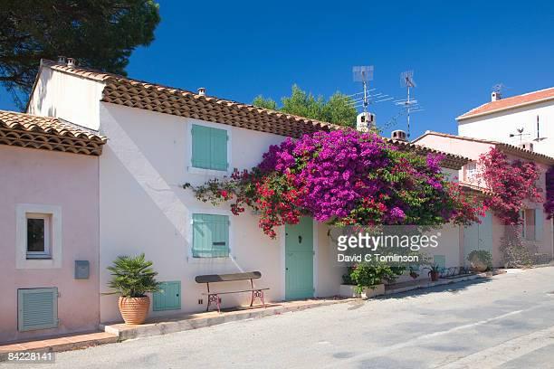 Typical village houses, Porquerolles, France