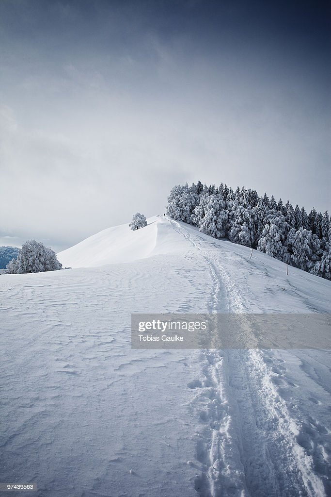 A typical winter landscape in Switzerland. : Stock-Foto