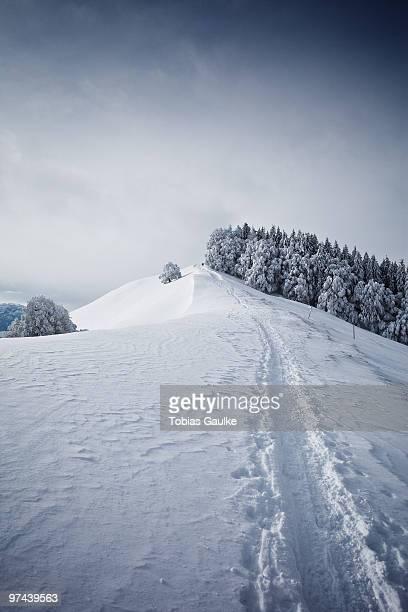 a typical winter landscape in switzerland. - tobias gaulke stock-fotos und bilder