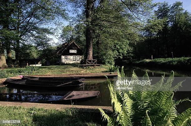 Typischer Spreewaldhof mit Kahnhafen