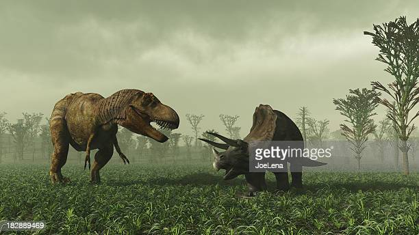 tyrannosaurus rex and triceratops - dinosaur stock pictures, royalty-free photos & images