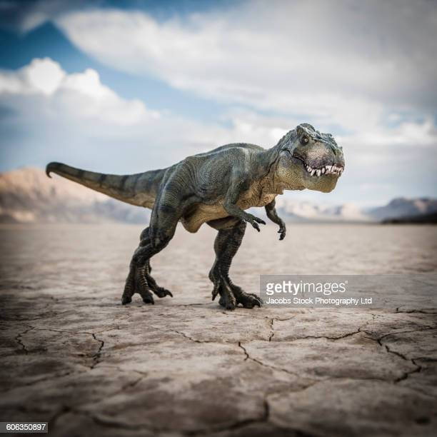 tyrannosaurus rex dinosaur in desert field - dinosaur stock pictures, royalty-free photos & images