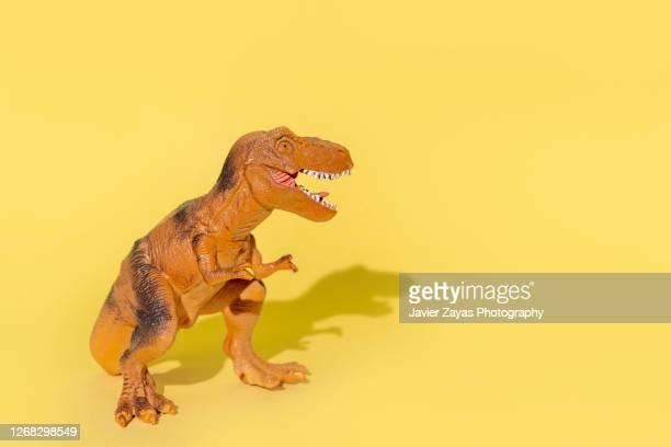 tyrannosaurus rex on yellow background - t rex stock-fotos und bilder