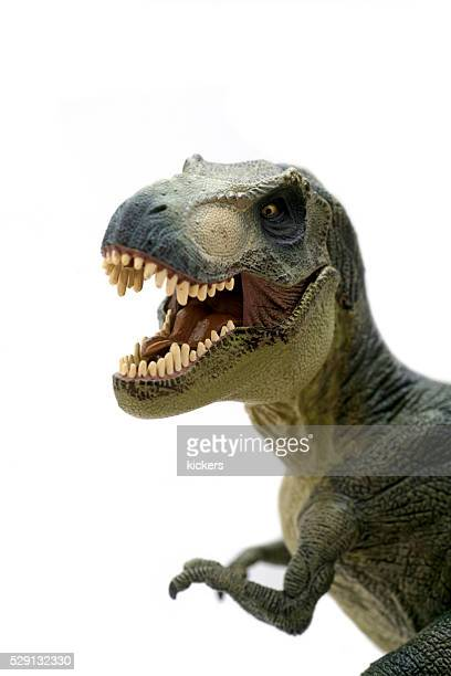 tyrannosaurus rex plastic model portrait - dinosaur stock pictures, royalty-free photos & images