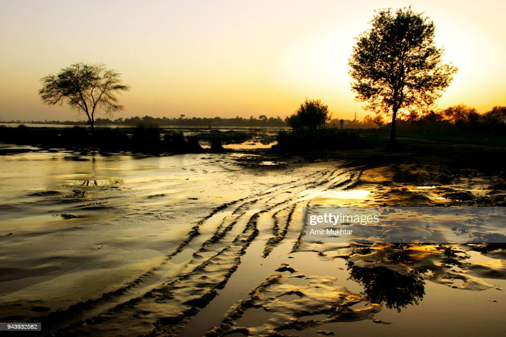 Tyre prints on sand in the river and sunset : Stock Photo