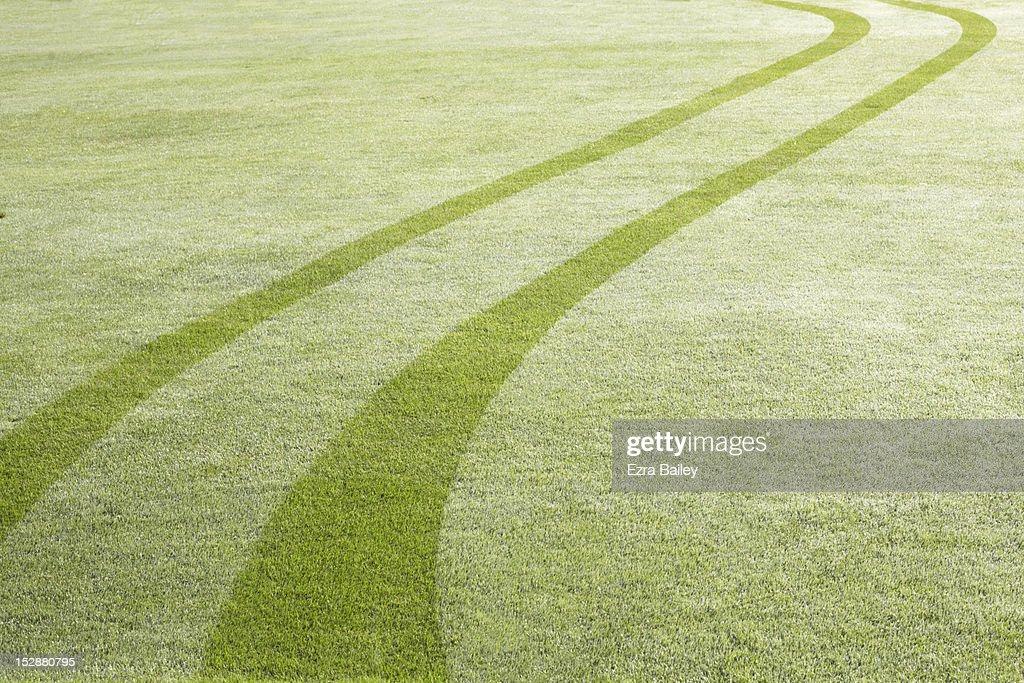 Tyre tracks in dew : Stock Photo