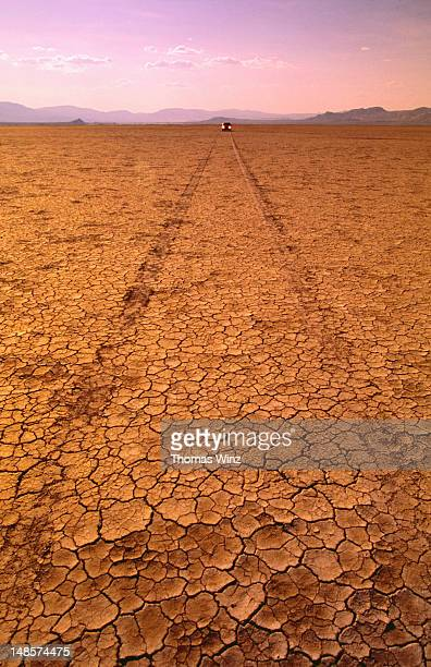 Tyre tracks on cracked desert floor, with approaching car.