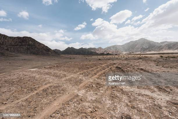 tyre tracks through the desert - land stock pictures, royalty-free photos & images