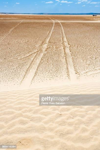 Tyre tracks through the desert
