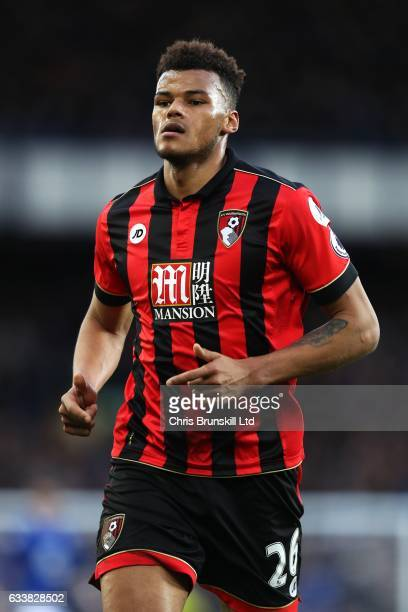 Tyrone Mings of AFC Bournemouth in action during the Premier League match between Everton and AFC Bournemouth at Goodison Park on February 4 2017 in...
