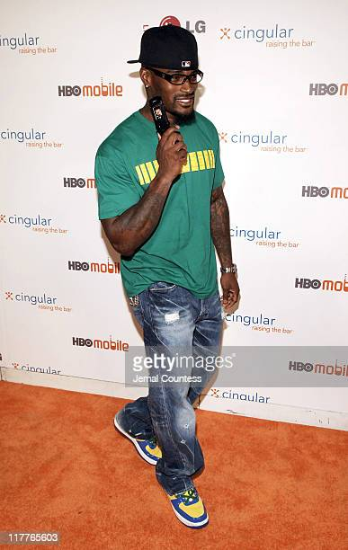 """Tyson Beckford during Cingular and LG Host Preview Party for HBO Mobile and the New Cingular LGCU 500 Cell Phone - """"Cingular"""" Carpet at Mr Chow -..."""