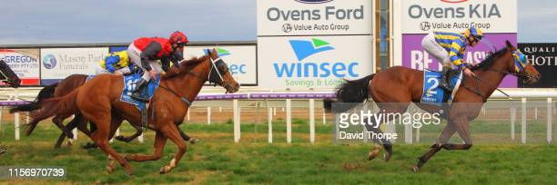 Tyson Returns ridden by Craig Robertson wins the Sam Miranda King Valley 0 58 Handicap on July 21 2019 in Wangaratta Australia