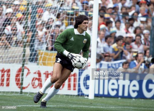 Ubaldo Fillol in action for Argentina during the FIFA World Cup match between Argentina and Brazil at the Estadio Sarria in Barcelona 2nd July 1982...