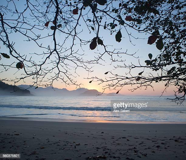 ubatuba , sao paulo , brazil - alex saberi stock pictures, royalty-free photos & images