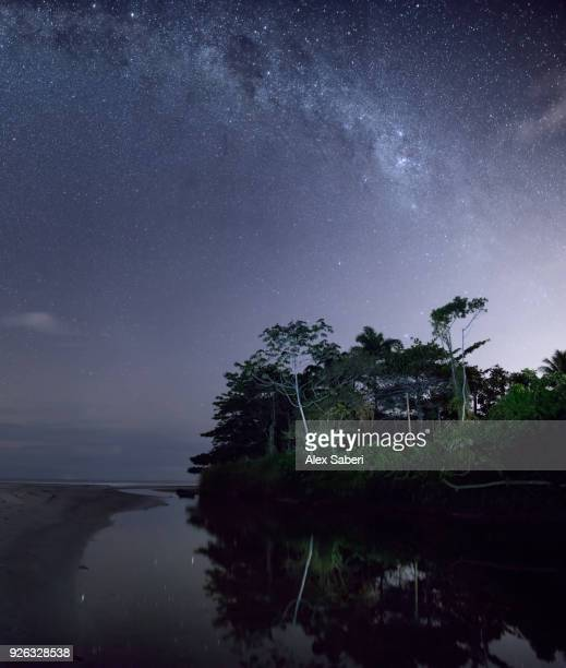 The Atlantic rainforest and jungle at night reflected in a river with the Milky Way visible.