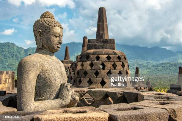 uddha statue at borobudur temple, yogyakarta, java, indonesia - java indonesia fotografías e imágenes de stock