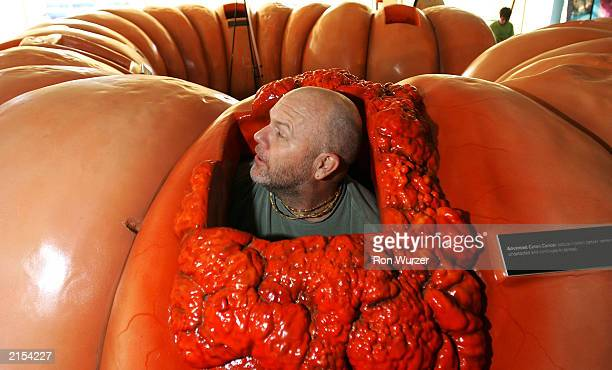 Uddhava Shadday peeps his head up while crawling through a 40foot long 4foot high replica of a human colon in Seattle on July 11 2003 The colon is...