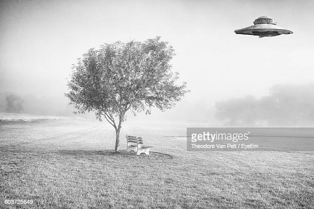 ufo flying over tree on grassy field during foggy weather - ovni fotografías e imágenes de stock