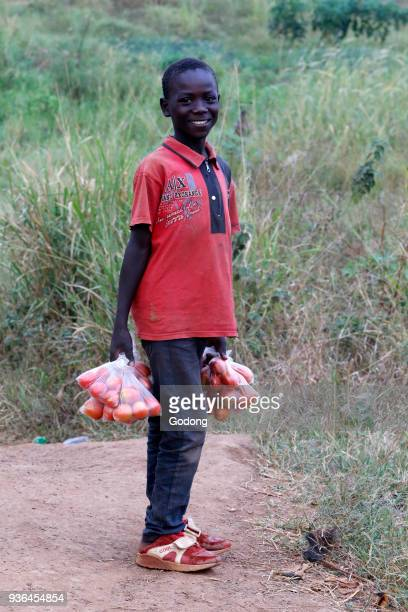Ugandan child carrying tomatoes. Uganda.