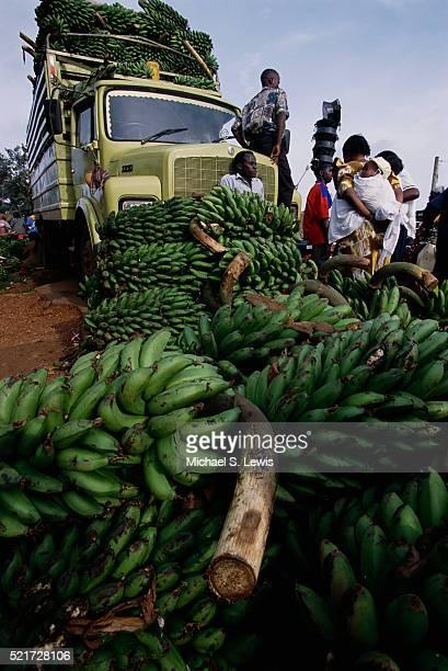 Ugandan Farmers Selling Plantains