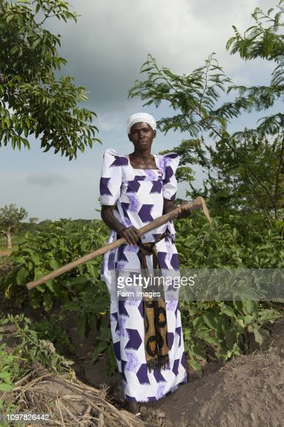 Ugandan lady in field with her hoe ready to work her crops Uganda