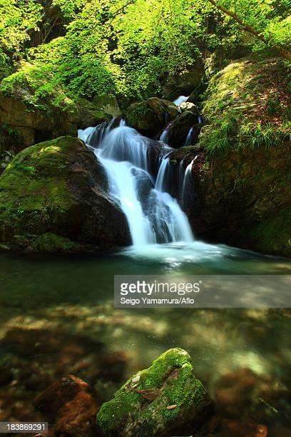 Uguisu waterfall, Tokushima Prefecture