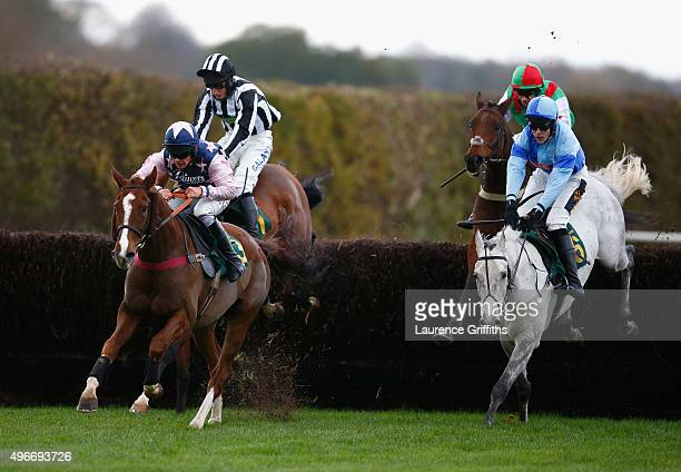 Uhlan Bute ridden by Liam Treadwell on their way to victory in The Friends of the Animal Health Trust Handicap Steeple Chase on November 11 2015 in...