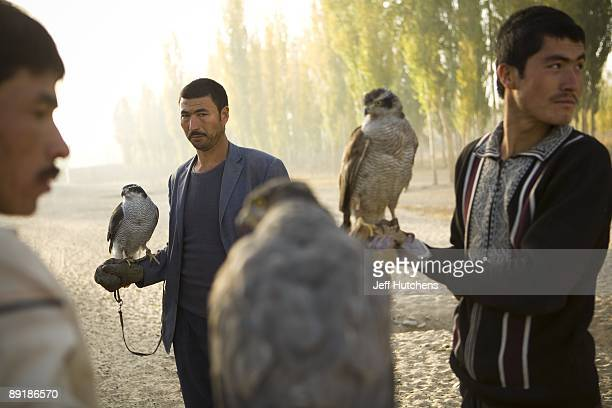 Uighur muslim falcon hunters hold their birds of prey in hand in the morning light on October 17 2007 in the Chinese province of Xinjiang China...